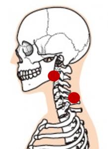 ツボの位置_頭痛_まとめ_横