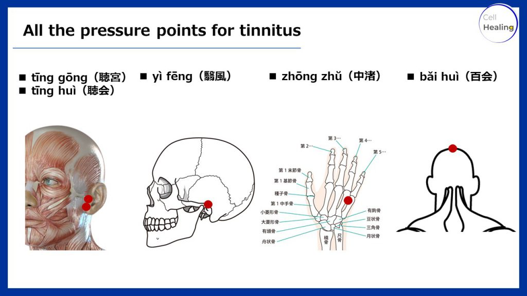 All the pressure points for tinnitus